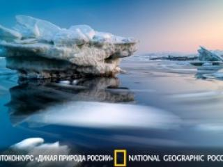 РГО: Открытие фотовыставки -Дикая природа России- в Санкт-Петербурге